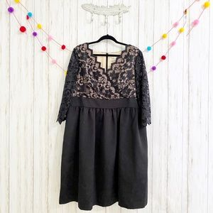 Eliza J Lace & Faille Fit And Flare Dress 14W